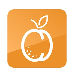 Apricot outline icon Fruit vector image