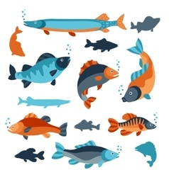 Set of various fish objects for decoration vector