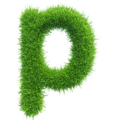 Small grass letter p on white background vector