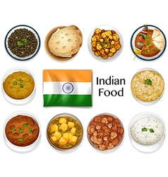 Different dish of indian food vector