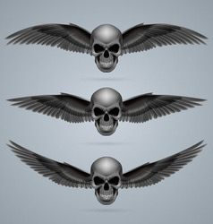 Three evil skulls with wings vector