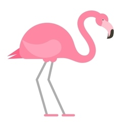 Cool pink decorative flamingo vector image vector image