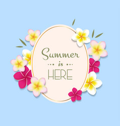 summer with frame and flowers vector image