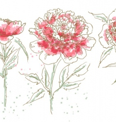 three drawn peony vector image vector image