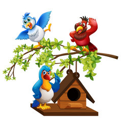 three parrots flying around birdhouse vector image