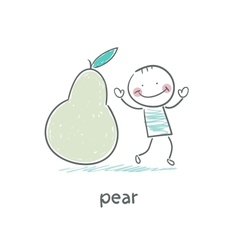 Man and pear vector