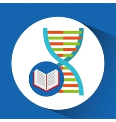 book school open and dna vector image