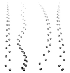 Paw prints silhouettes isolated vector