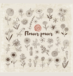 set of doodle sketch flowers on vintage paper vector image vector image