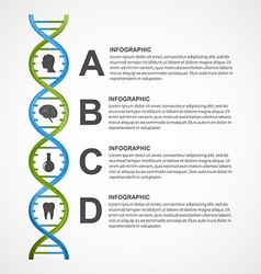 DNA science infographics design element vector image vector image