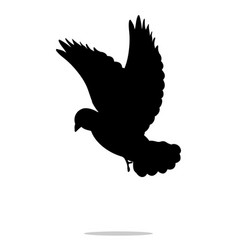 Pigeon bird black silhouette anima vector