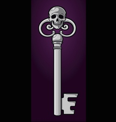 skeleton key vector image vector image