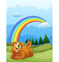 A bear at the hill with a rainbow in the sky vector