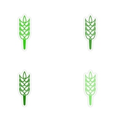 Assembly realistic sticker design on paper wheat vector