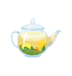 natural herbal tea in a glass transparent teapot vector image