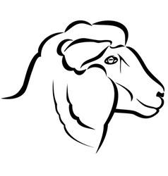 Sheep head vector image
