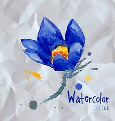 Watercolor style of Snowdrops vector image vector image