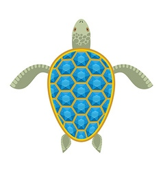Water turtle sapphire carapace marine animal with vector