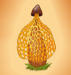 Yellow mushroom vector
