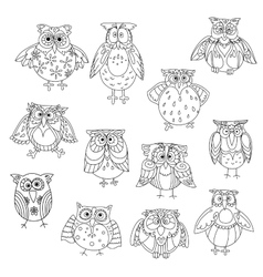 Funny owl silhouettes outline with cute feathering vector