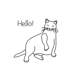 Cute cat sitting in a funny pose vector image