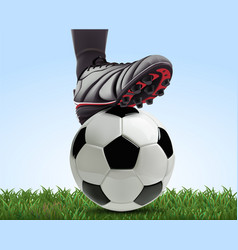 Soccer ball with football player feet on grass vector