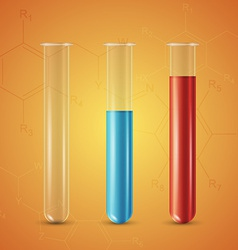Test tube vector image vector image