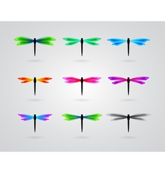 collection of different color butterfly vector image