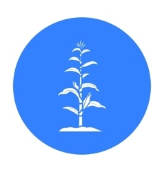Corn icon black single plant icon from the big vector