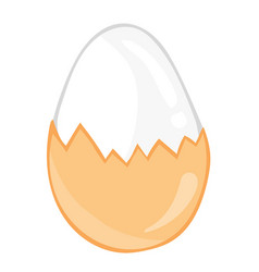 Boiled eggs isolated vector