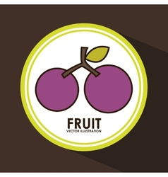 Fruit seal vector