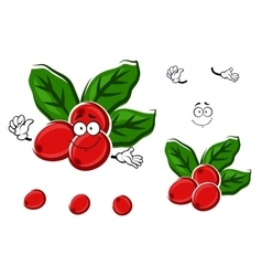Cartoon red berries of coffee with leaves vector