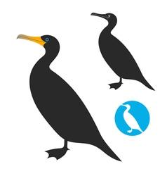 Cormorant vector image vector image