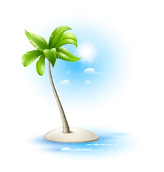 Strovok tropical with palm trees vector image