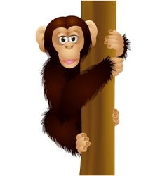 Funny chimpanzee cartoon vector