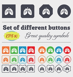 Lungs icon sign Big set of colorful diverse vector image vector image