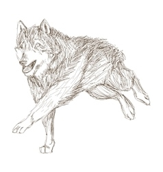 Wolf running sketch icon vector