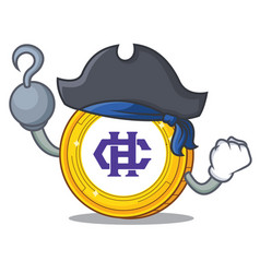 Pirate hshare coin character cartoon vector