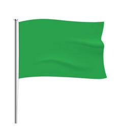 Waving green flag tempalte vector image