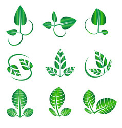 Abstract green leaf set organic icons vector