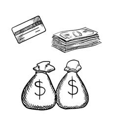 Credit card dollar bills and money bags vector image