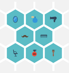Flat icons whiskers elbow chair comb and other vector