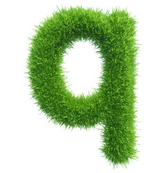 small grass letter q on white background vector image