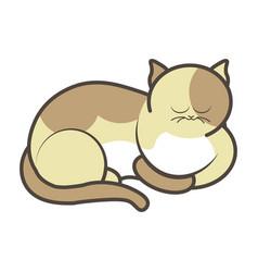 cartoon sleeping kitten vector image