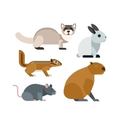 Cartoon rodents animals set vector