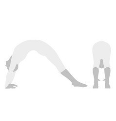 yoga pose vector image