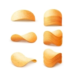 Set of potato chips stacks close up isolated vector