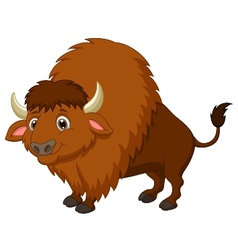 Bison cartoon vector image