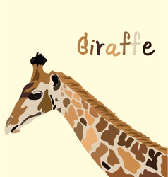 Giraffe head vector