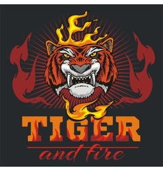 Tiger head hand and fire - vector